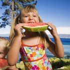 Vacation Food Menu for Toddlers