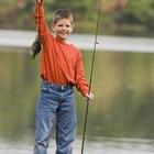 Técnicas de pesca de la mojarra