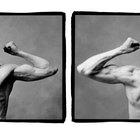 Algunos ejemplos de músculos antagonistas