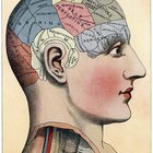 Cómo hacer un cerebro humano de una pelota de espuma de polietileno
