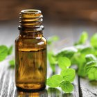 Side Effects of Enteric Coated Peppermint Oil