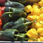 How to Roast Poblano Peppers