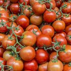 The Best Sources of Lycopene