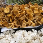 Cook Dry Chanterelles