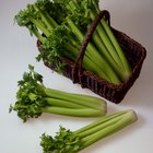 How to Roast Celery