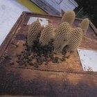 Cómo derretir los crayones viejos para hacer crayones arremolinados