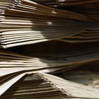 Plantas usadas para hacer papel