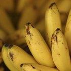Fructosa y plátanos