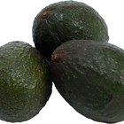Ventajas y desventajas de la fruta del aguacate