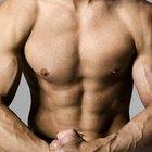 ¿Qué es mejor para aumentar la masa muscular: los carbohidratos o las proteínas?