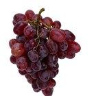 Beneficios nutritivos de las uvas rojas