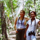 Razones por las que el excursionismo (hiking) es bueno para ti