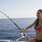 Top 10 Saltwater Fishing Reels