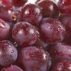 ¿Ayudan las uvas o el jugo de uvas a prevenir los virus estomacales?