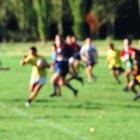 ¿Qué equipamento se requiere para jugar Rugby?