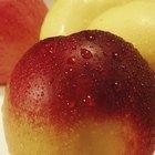 Nectarinas y el índice glucémico