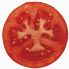 How to Dehydrate Sliced Tomatoes
