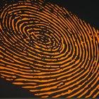 El proceso de recoger pruebas de huellas dactilares