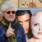 15 películas de habla hispana que no puedes dejar de ver