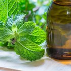 Peppermint Oil for Itching