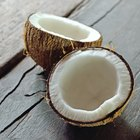 Uses of Coconut Fiber