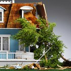 If a Tree in My Yard Falls on My Neighbor's House Whose Insurance Is Responsible?