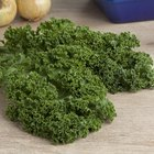 How to Cook Delicious Kale