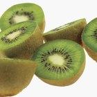 ¿Puedes comer la cáscara de un kiwi?