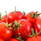 ¿Los tomates pueden irritar la artritis?