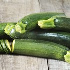How to Freeze Squash & Zucchini