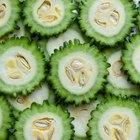 Nutrición del melón amargo