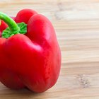 How to Dry Red Bell Peppers to Make Flakes