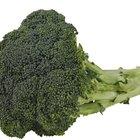 Alimentos que impiden la la digestión de Synthroid