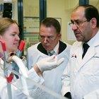 ¿Qué puede provocar que una prueba de ADN sea imprecisa?