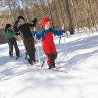 ¿Cuáles son las diferentes partes del Cross-Country Skiing?