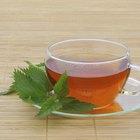 El descenso de peso y el té de ortiga