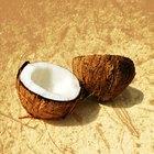 ¿El aceite de coco puede causar reflujo ácido?