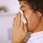 ¿La histamina realmente causa una reacción alérgica?