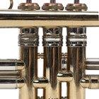 ¿Qué son las notas pedales en la trompeta?