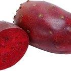 Valores nutritivos del higo chumbo