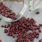 Ways to Eat Kidney Beans