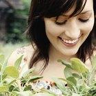 ¿Existen hierbas para tratar la colitis?