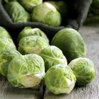 Foods That Fight Colon Cancer
