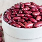 Ten Kinds of High-Fiber Beans