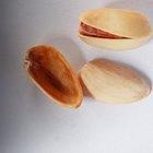 ¿Cuántos pistachos son 100 calorías?