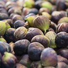 How Much Fiber Is in Fresh Figs?