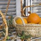 El ácido cítrico en las limas, los limones y las naranjas
