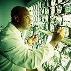Áreas del cerebro afectadas por la esquizofrenia