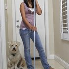 How To Teach Dogs To Go To The Door When They Need To