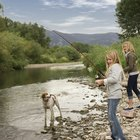 Tips on Salmon Fishing From the Shore
